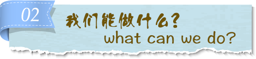 what-can-we-do-.png